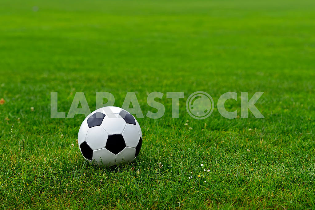 Leather soccer ball — Image 1656