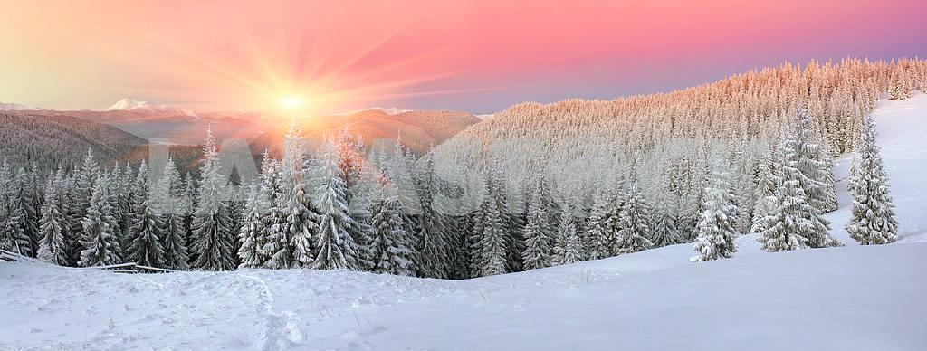 House of shepherds in winter