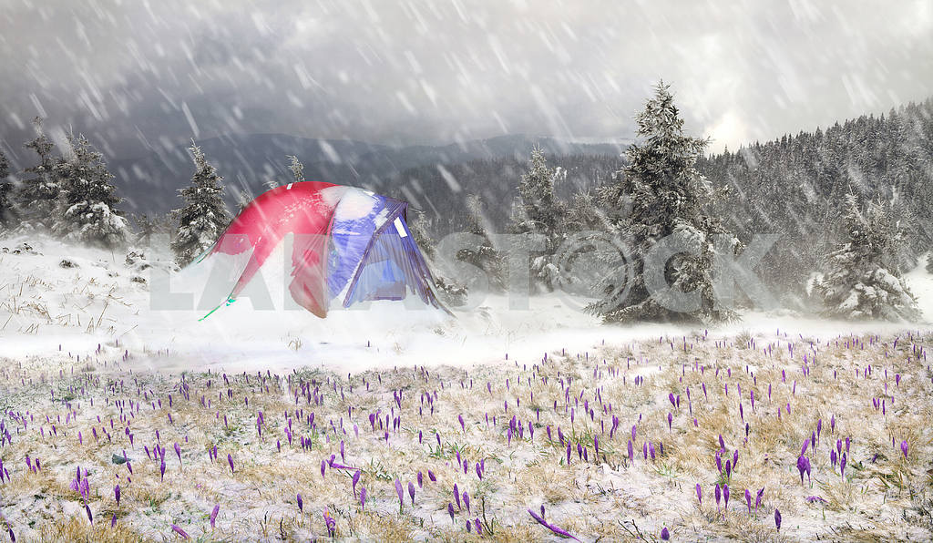 Tent after the storm — Image 16988