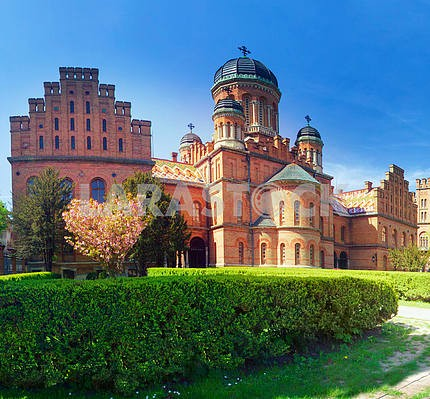 Chernivtsi National University