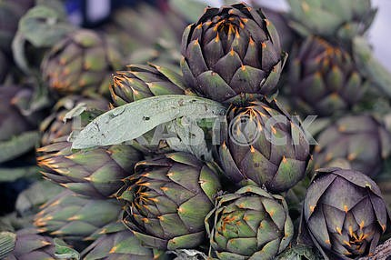 Pile of Artichoke