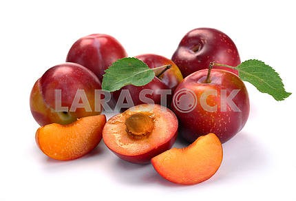 plum and leaves