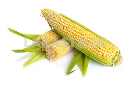 Fresh corn fruits