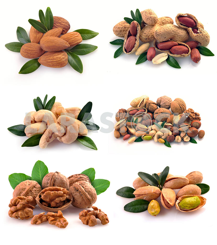 Set of nuts on a white background — Image 17095