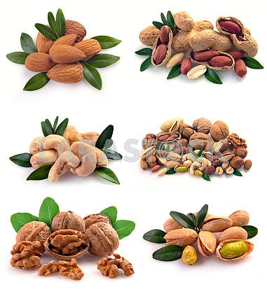 Set of nuts on a white background