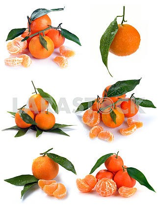 Clementines with segments