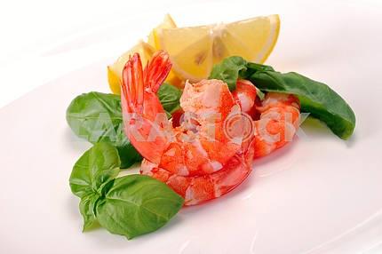 Salad of shrimp