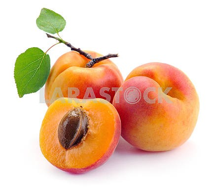 Apricot with leaves