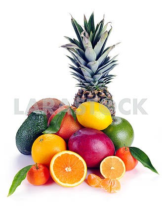 Set of citrus and tropical fruits