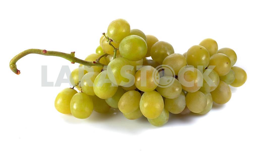 Fresh grapes — Image 17390