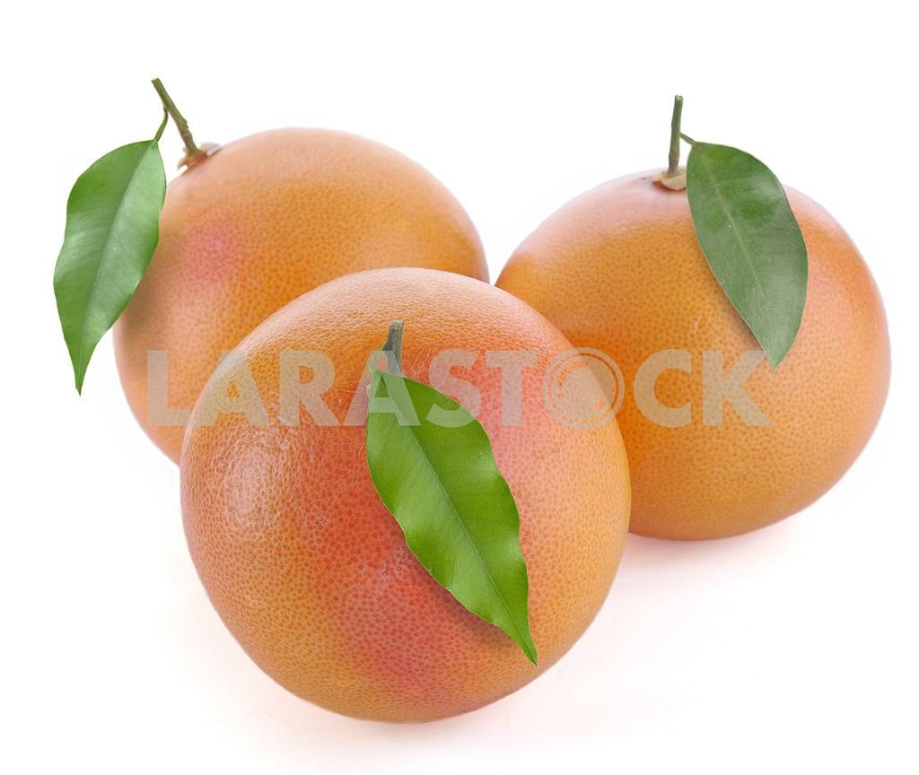 Grapefruit — Image 17392