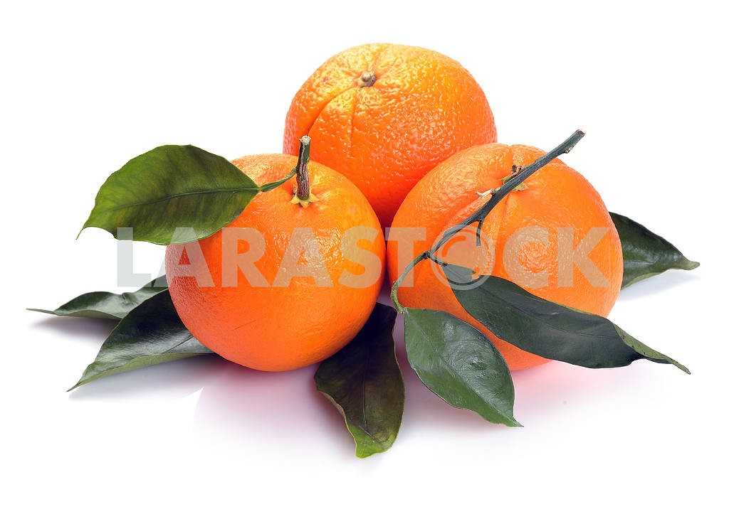 Three orange — Image 17446