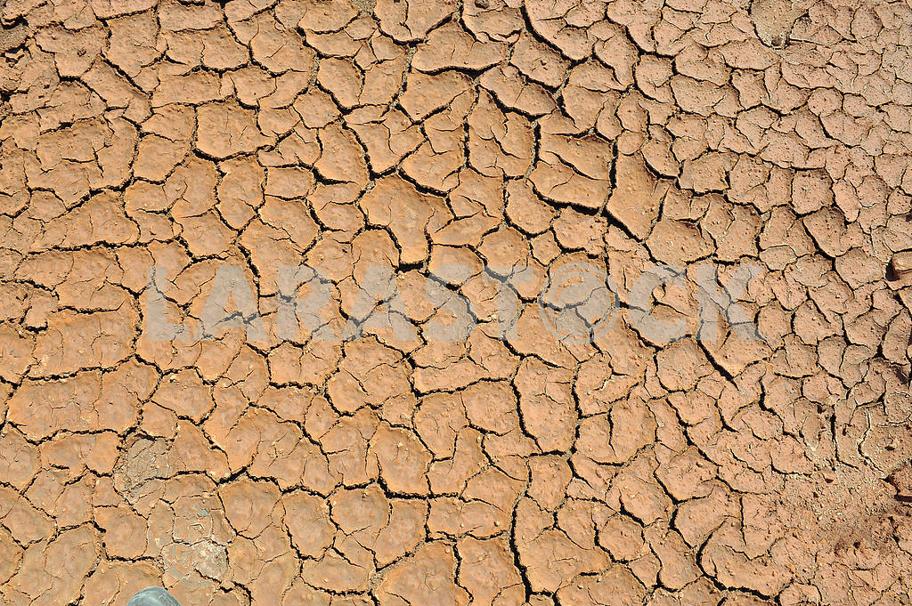 Cracked clay ground — Image 17526