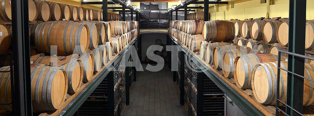 Casks in wine cellar and bottle