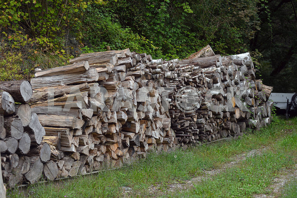 Firewood for heating stacked in piles — Image 17685