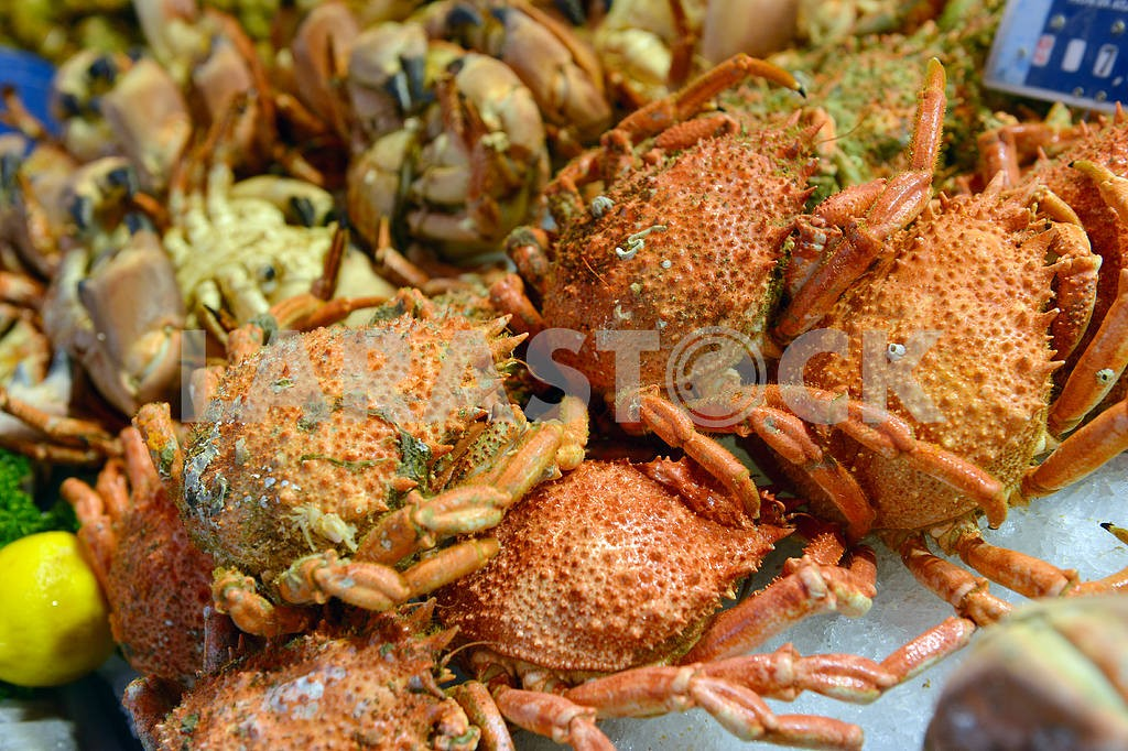 Boiled crabs — Image 17742