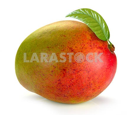 Mango with leaves