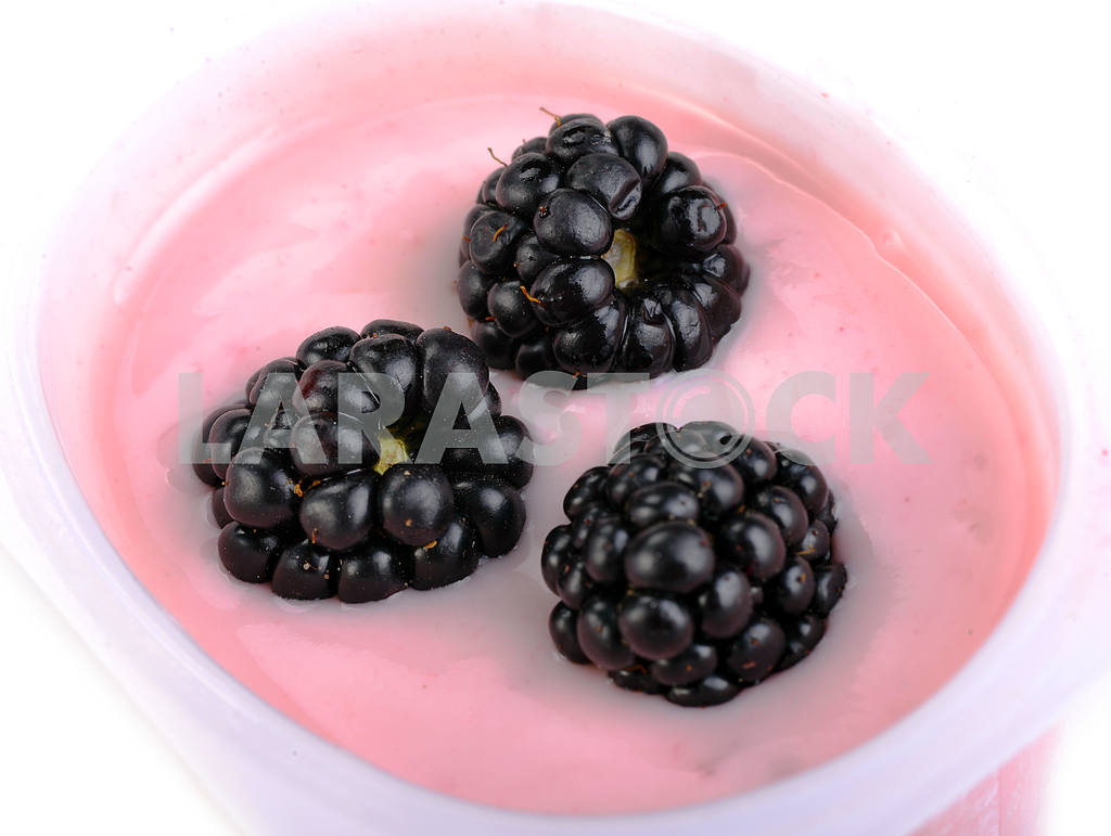 Fresh blackberries with non-fat yogurt — Image 17845
