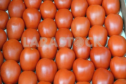 Tomatoes on the counter