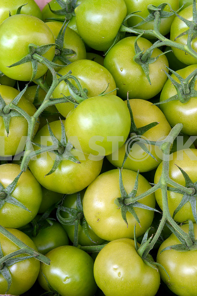 Green tomatoes on the counte — Image 17929
