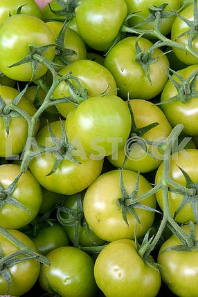 Green tomatoes on the counte