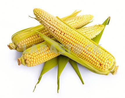 Fresh corn fruits
