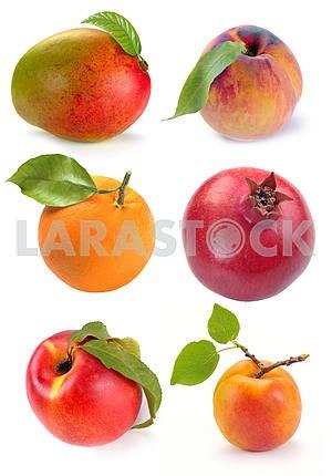 single set of fruits