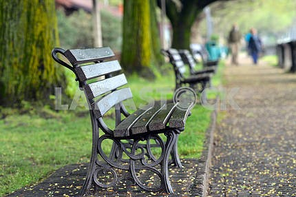 benches in the Spring Park