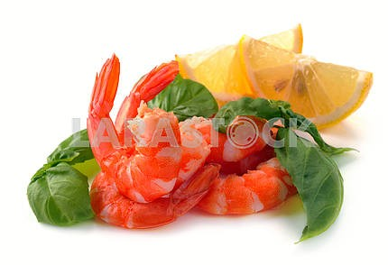 Simple and basil of shrimp
