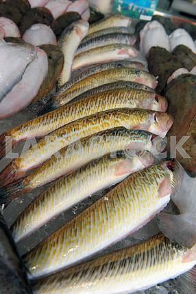 Рыба на рыночной витрине