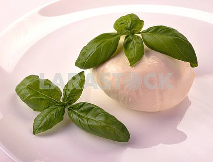 Mozzarella with basil