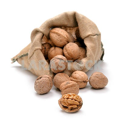Walnuts and a bag