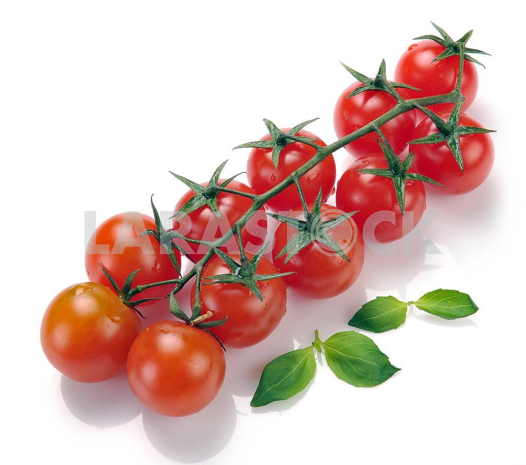 Cherry tomatoes — Image 18213