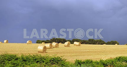 Farmers field with hay bales