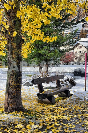 Bench in the park with yellow leaves and snow