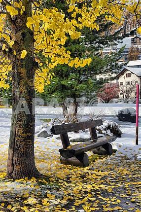 Скамейке в парке с желтыми листьями и снегом