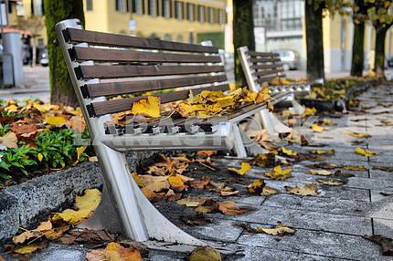 Autumn sheet on a bench