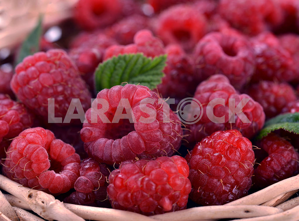 Fresh sweet raspberries — Image 18791