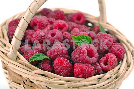 Fresh sweet raspberries in a wicker basket