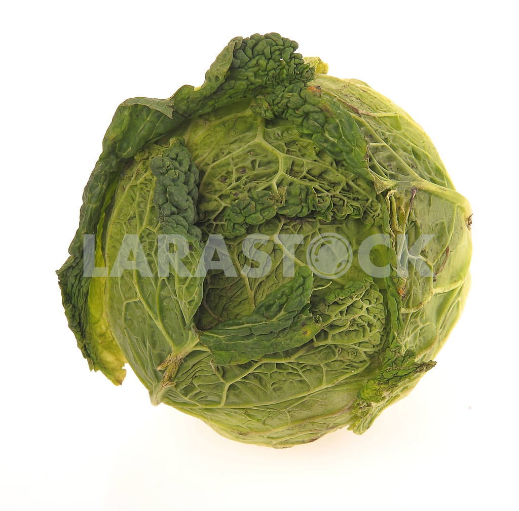 Savoy cabbage — Image 18831