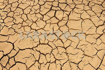 Трещины глинистые почвы