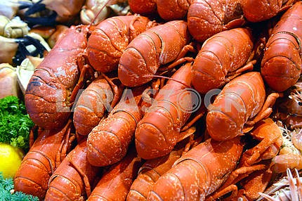 Seafood in the sea market