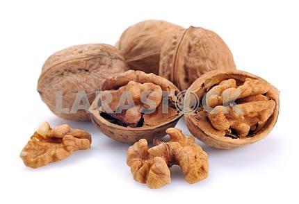 Walnut a shel