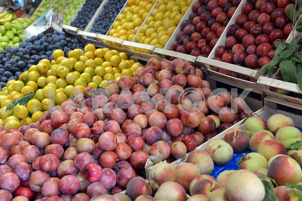 Plums and peaches on display — Image 19449