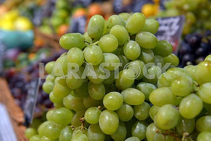 Grapes on display in a supermarket