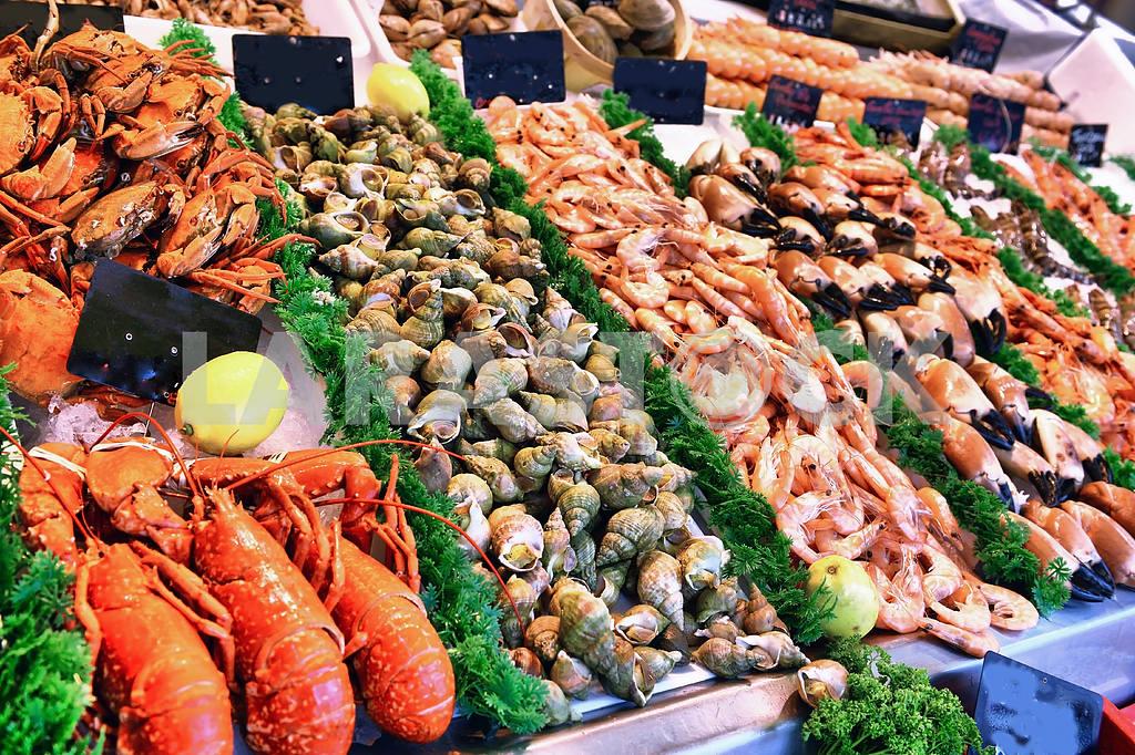 Seafood — Image 19616