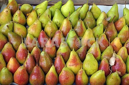 Roadside fruit market. Pears
