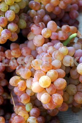 Придорожный фруктовый рынок. Виноград