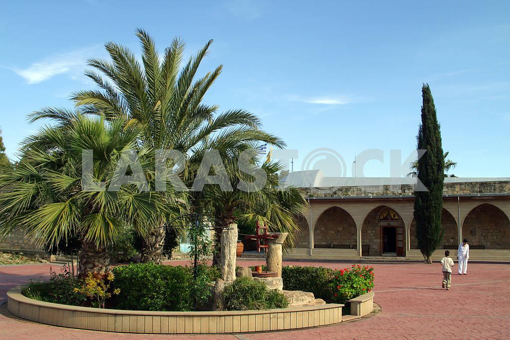 Monastery cats. Limassol. Cyprus — Image 20260