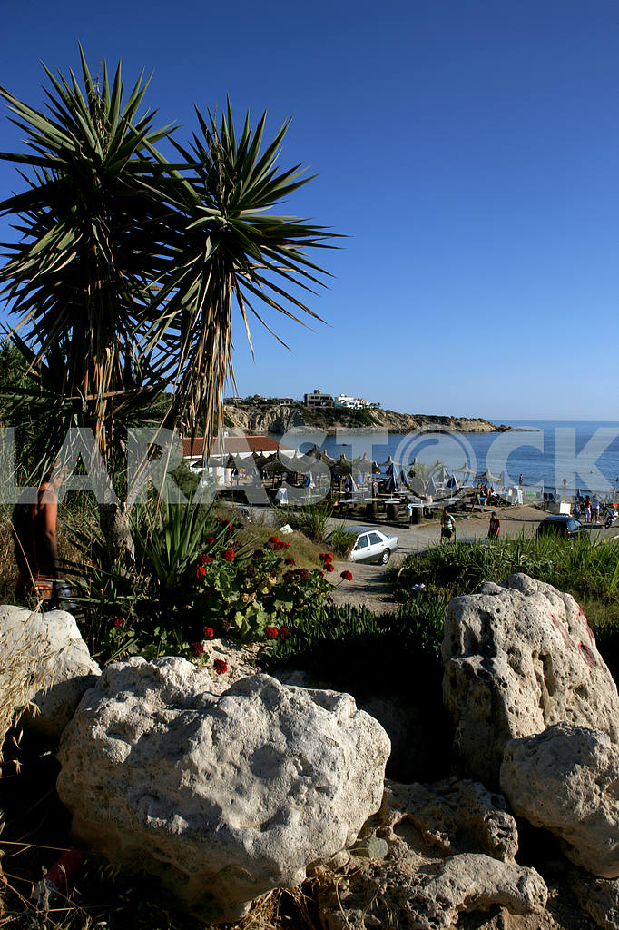Nature on the coast of Paphos, Cyprus — Image 20338